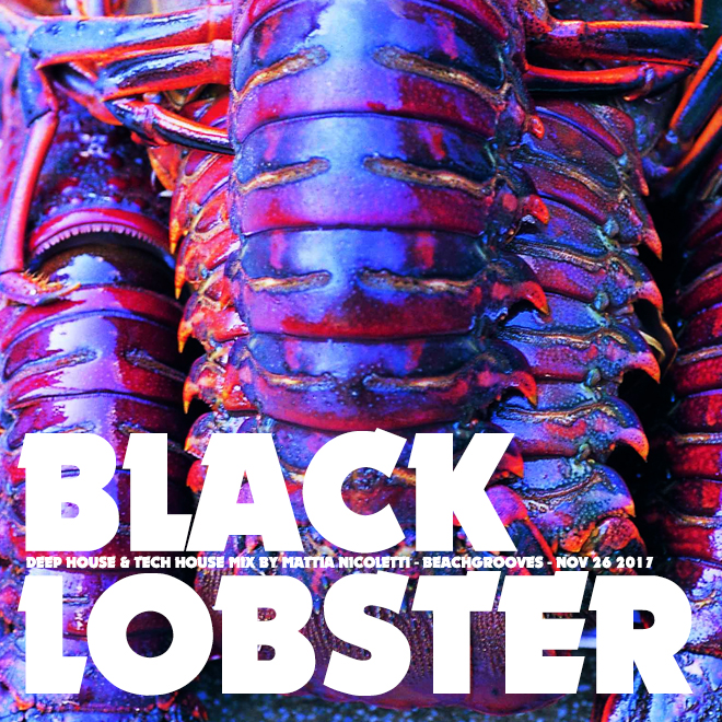 Black lobster - Deep House mix by Mattia Nicoletti - Beachgrooves - November 26 2017